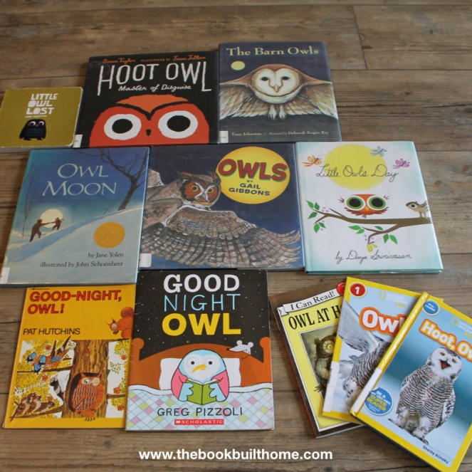 O is for Owl Images.002