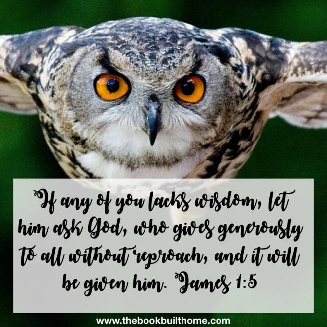 O is for Owl Wisdom.001
